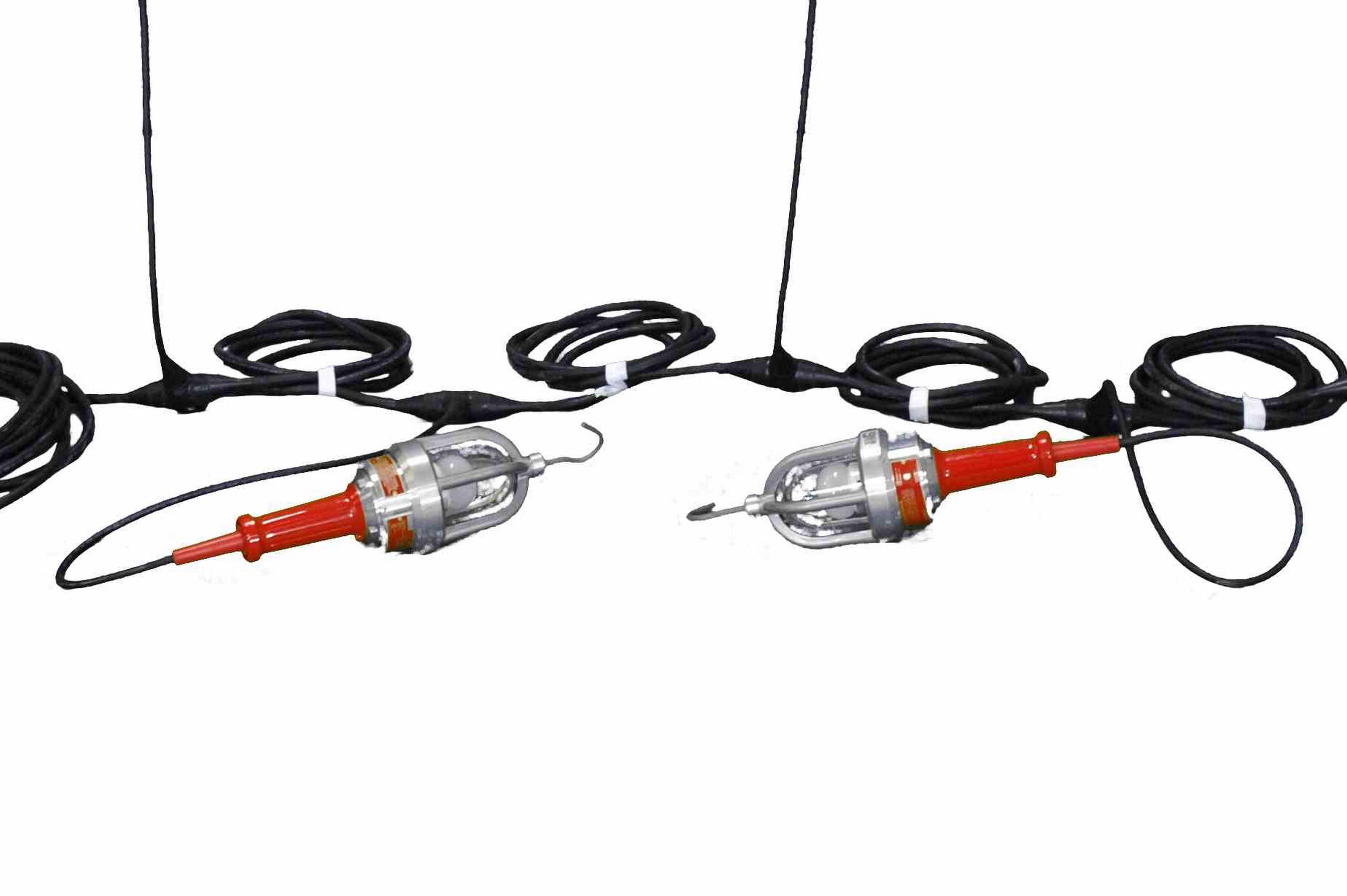explosion proof led string lights - 8 lights - twistlock plug
