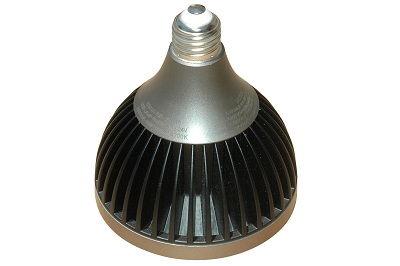 LED17W-PAR38-WP