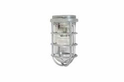 10 W plahvatuskindel LED-tuli - C1D2 - 1050 luumenit - alumiiniumkorpus - NEMA 4 - kinnitust pole kaasas