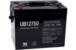 UB-12750 Sealed Lead Acid Rechargeable Battery - AGM (Absorbent Glass Mat Technology)